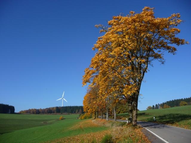 HP Juette Herbst